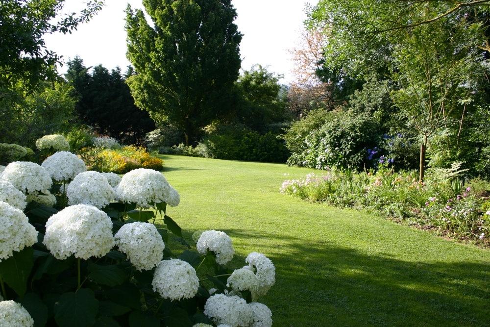 Aménager son jardin cet été : quels sont les conseils pratiques ?
